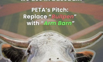 PETA's Pitch to Liberate the Lingo of Baseball: Scratch 'Bullpen' for 'Arm Barn'