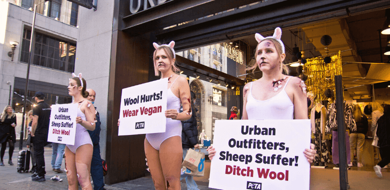 'Bloodied Sheep' Flock to Urban Outfitters: Ban Wool!